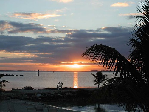 Abaco National Park is best famous for the lush vegetation that operates as a habitat for a large number of bird species that attract birdwatchers from all over the world.