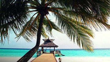 Vacations-81